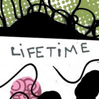 lifetime200