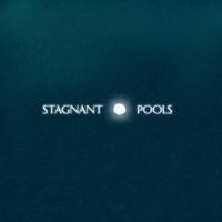 stagnantpools200