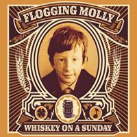 dvd-floggingmolly200