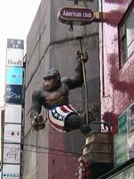 culture-ape