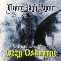 va-flyinghighagain200